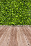 Green leaf and foot wood background Stock Image