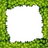A green leaf frame. Illustration vector illustration