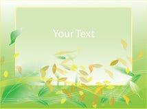 Green leaf frame illustration Royalty Free Stock Photo