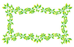 Green Leaf Frame Stock Image
