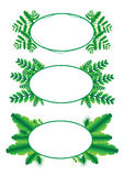 Green leaf frame vector and illustration 01 Stock Photos