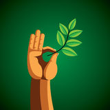 Green leaf in hand. Stock Photography