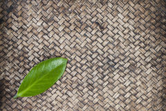 Green leaf on hand work bamboo Royalty Free Stock Photo