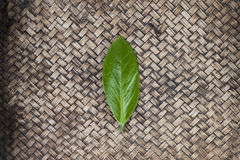 Green leaf on hand work bamboo Royalty Free Stock Image