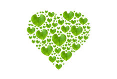 Green leaf in heart shape, isolated with clipping paths on white Royalty Free Stock Image