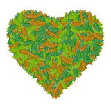 Green leaf heart sign  on white Royalty Free Stock Photography