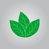 Green leaf icon. For save energy concept, vector, illustration Stock Photos