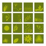 Green Leaf Icon Set vector illustration