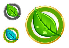 Green leaf icons Stock Photo