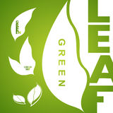 Green leaf icons logo and design elements Stock Photos
