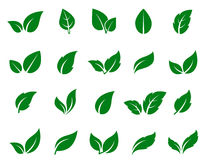 Green leaf icons set Stock Images