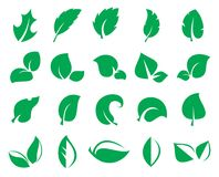 Green leaf iconss isolated on a white background. Leaf icons. Collection of 20 green symbols of leaves isolated on a white background. Vector illustration Stock Images