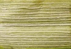 Green leaf leek macro Royalty Free Stock Photo