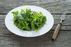 Green leaf lettuce on a plate. And rustic wooden table Royalty Free Stock Photo