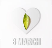 Green leaf lies on a white heart, love concept, March 8, Interna Royalty Free Stock Image