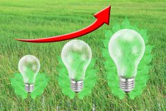 Green leaf with light bulb, rice field background. Royalty Free Stock Photography