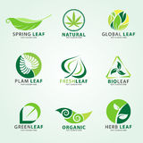 Green leaf logo for business vector set design Royalty Free Stock Photo