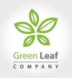 Green leaf logo vector illustration