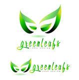 Green leaf logo concept. For natural or bio products Stock Photos