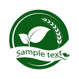 Green leaf logo. With wheat on white background. Leaves icon design elements, ecology concept,  vector illustration Stock Images
