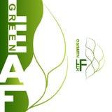 Green leaf logo. Green leaf icons logo and design elements. eco bio natural logos. Logo - Eco leaf. Green leaf logo. Green leaf labels stock illustration