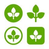Green Leaf Logo Set. Eco Sign. Vector Royalty Free Stock Photo