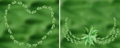 Green leaf material Royalty Free Stock Photo