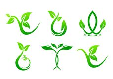 Green leaf, nature logo stock illustration