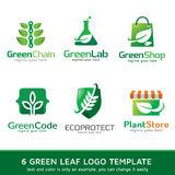 Green Leaf Nature Logo Template Design Vector Stock Photography