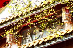Green leaf with nice china building Stock Photography