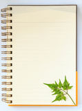 Green leaf in notebook Royalty Free Stock Photo