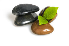 Green leaf and  Pebbles. Green leaf and pebbles on white background Royalty Free Stock Images