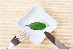 Green leaf on a plate as vegetarian diet Stock Photography