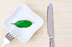 Green leaf on a plate as vegetarian diet Royalty Free Stock Photography