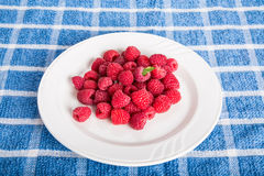 Green Leaf on Plate of Red Raspberries. White plate of luscious, red, ripe raspberries Stock Photography