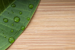 Green leaf with rain droplets. On the bamboo background.  Macro with copy space Royalty Free Stock Photo