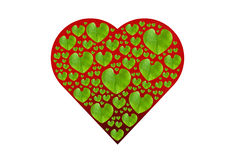 Green leaf in red heart shape, isolated with clipping paths on w Royalty Free Stock Photos