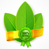 Green leaf with ribbon Royalty Free Stock Photos