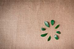 Green leaf on sacking background Royalty Free Stock Photo