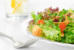 Green Leaf Salad Royalty Free Stock Image