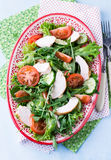 Green leaf salad with vegetables and chicken. Top view Stock Image