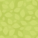Green leaf seamless pattern Stock Photos