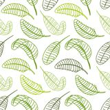 Green leaf seamless pattern for your design Royalty Free Stock Image