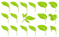 Green leaf set Stock Photography