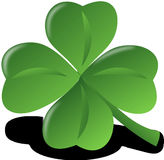 Green, Leaf, Shamrock, Plant Royalty Free Stock Photo