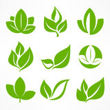Green leaf signs Royalty Free Stock Photography