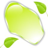 Green leaf with space for text. Vector. EPS10 Royalty Free Stock Photos