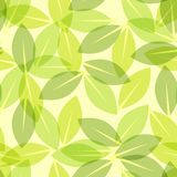 Green leaf spring wallpaper, elegant fresh foliage or greenery, vector illustration. Trendy colors of the year. Beautiful green pattern. Vector illustration Royalty Free Stock Photo