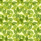 Green leaf spring wallpaper, elegant fresh foliage or greenery, vector illustration. Trendy colors of the year. Beautiful green pattern. Vector illustration Stock Image