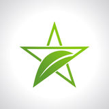 Green leaf with star icon Stock Image